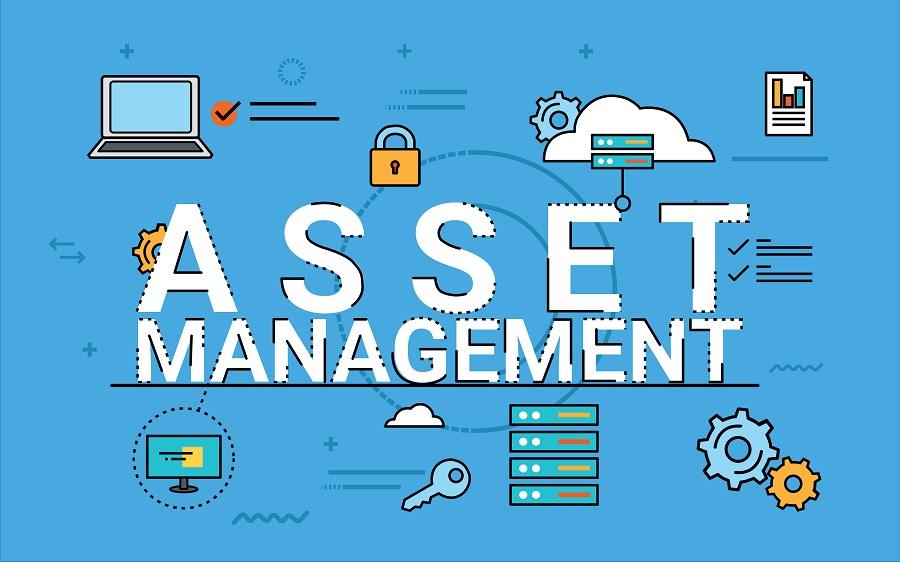 Universal Asset Management Tokyo Review