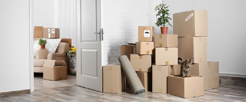 Moving To Charlotte Can Be Easy: Tips for Finding Professional Movers