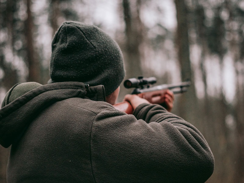 Hunting Weapons for Wild Animals: What You Should Consider